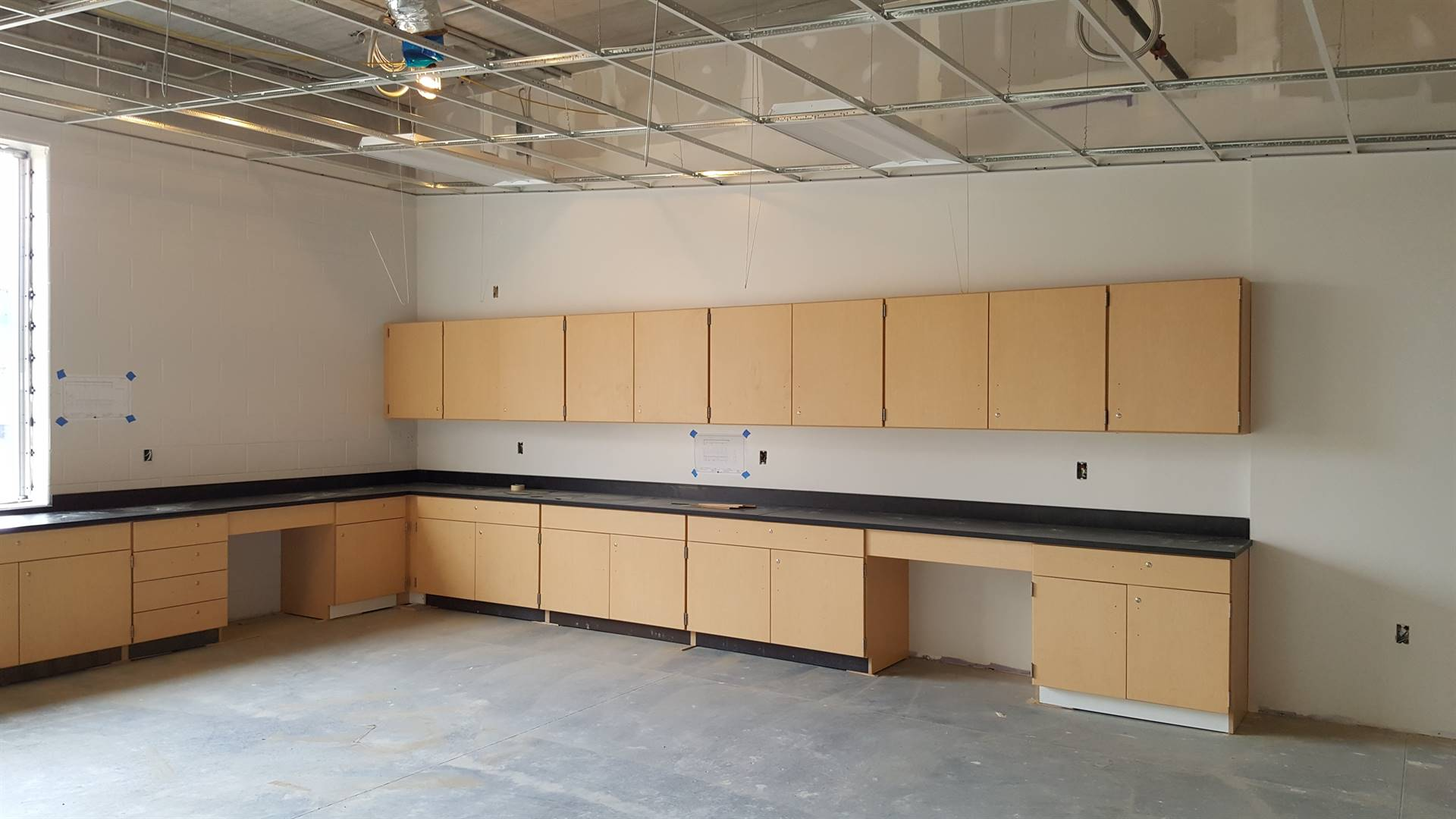 Chemistry lab cabinetry