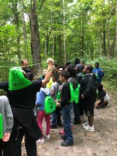 Students having a conversation about an ecosystem