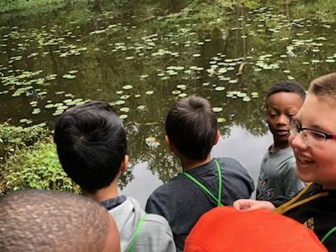 Students looking at fish