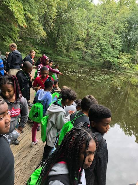Students looking for turtles in a pond