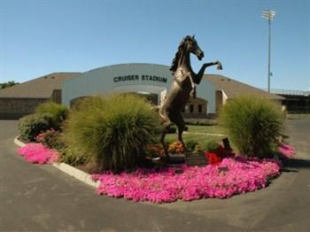 Statue of Cruiser